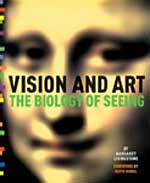 vision and art, livingston, art theory
