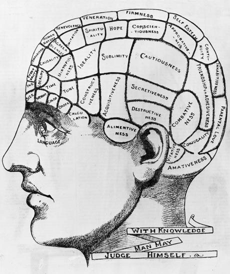 54d587827facc_-_esq-brain-phrenology-022013-de